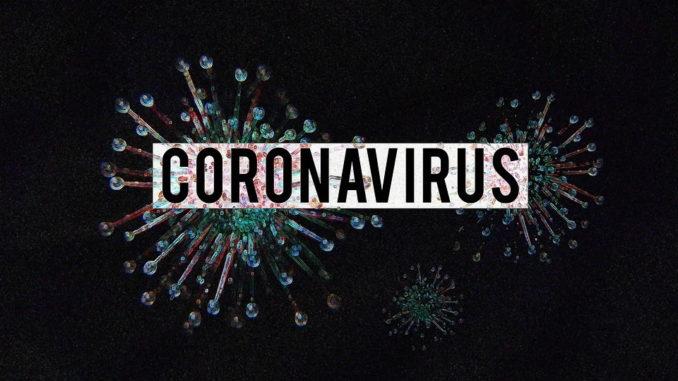 Bitkom zum Online-Handel während der Corona-Pandemie