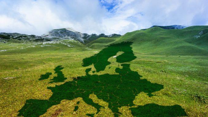 Bitkom zum European Climate Law und dem Green Deal