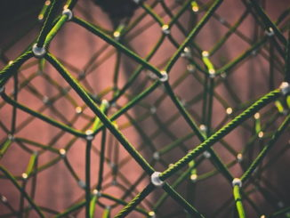 Bitkom bietet digitale Unterstützung in Zeiten von Corona