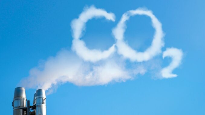 Fast 3 von 10 Unternehmen kompensieren CO2-Emissionen