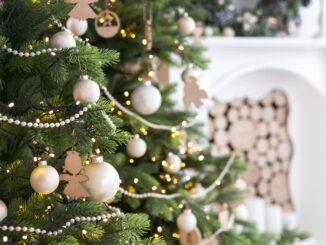 Jeder Zehnte bestellt seinen Weihnachtsbaum online
