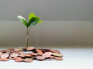 Staatsanleihen kaufen: Wie es funktioniert und was man beachten muss